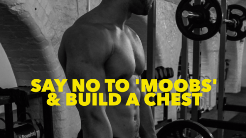 Get rid of 'moobs' & build a chest